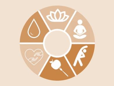 Mandala de bem-estar com cada um dos passos para rotina de saúde e bem-estar